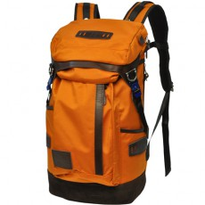 No 01741 Potential Orange