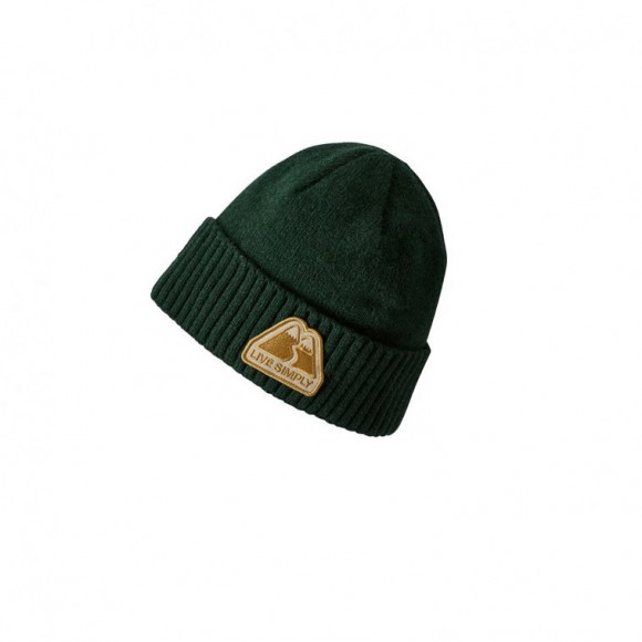 45ad5fc37a6 Patagonia Brodeo Beanie Green 35